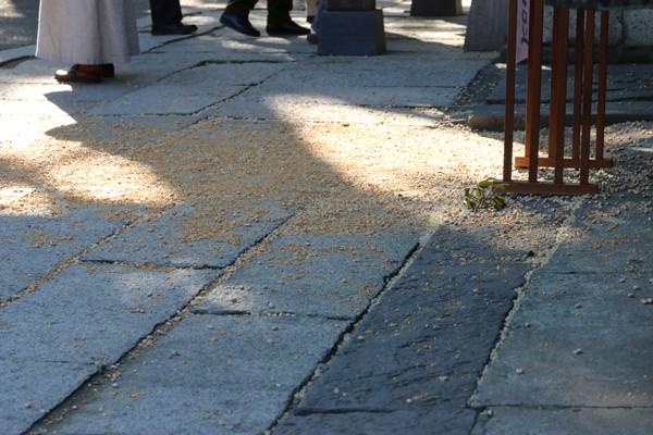 鷲宮神社 年越祭 豆