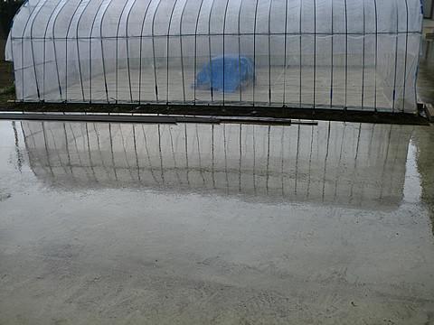 雨ェ・・・