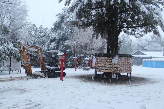 大雪の日の鷲宮神社参道を除雪する重機
