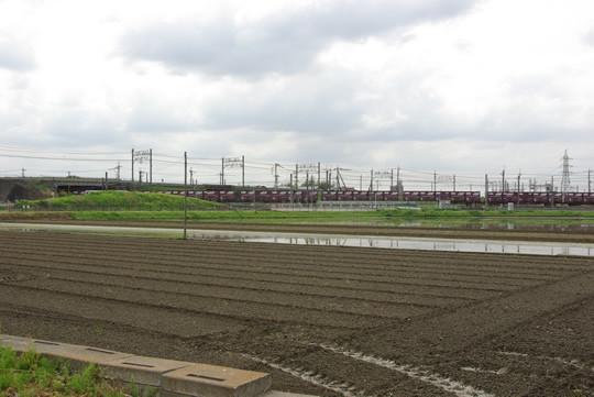 貨物列車と水田