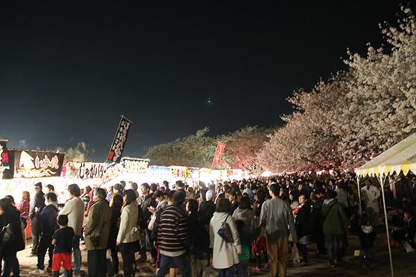 幸手権現堂 夜桜20150331-1