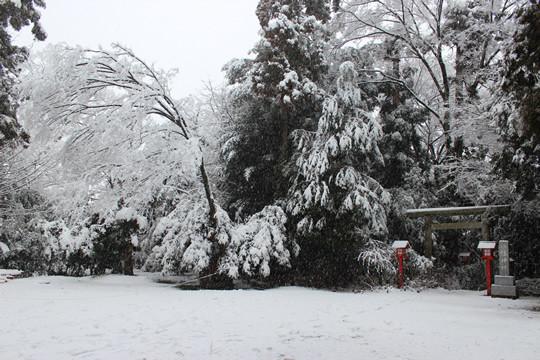 大雪の日の鷲宮神社八幡神社前