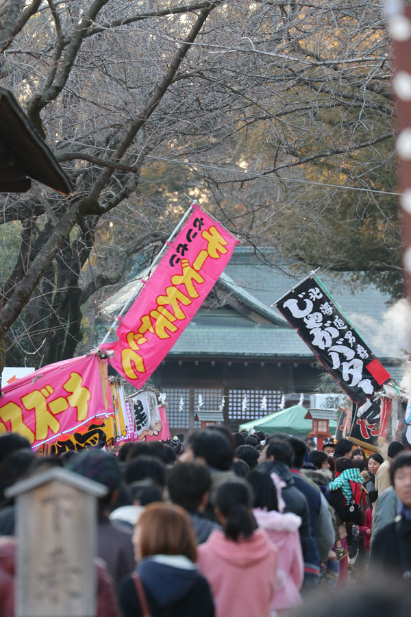 1月4日の鷲宮神社境内の参拝列