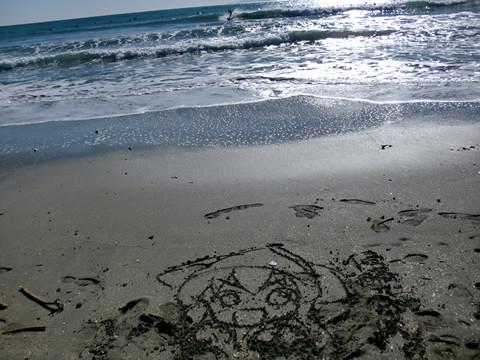 由比ヶ浜にイカちゃんがいました