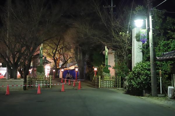 鷲宮神社2019年初売り