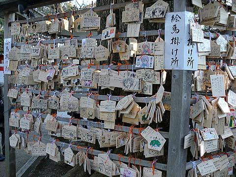 鷲宮神社の絵馬掛け所