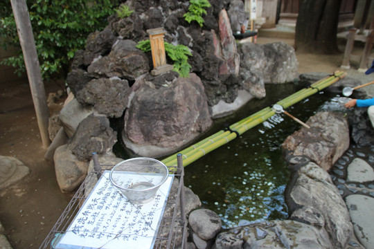 川越 熊野神社の銭洗弁財天
