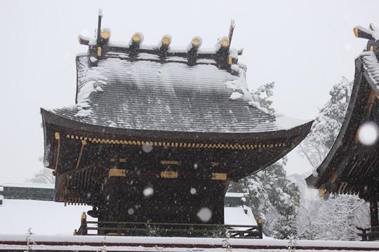 大雪の日の鷲宮神社本殿の屋根