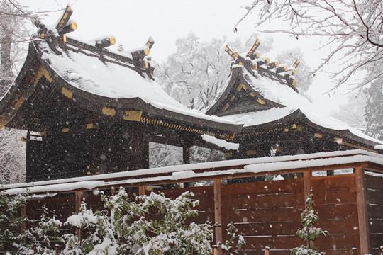 大雪の日の鷲宮神社本殿
