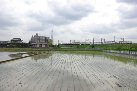 東武線と水田