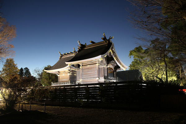 明け方の本殿 鷲宮神社2015年初売り