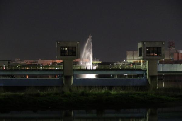 幸手権現堂 夜桜4