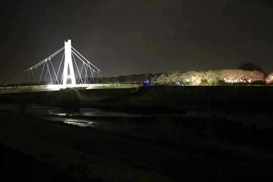幸手権現堂 外野橋と夜桜3月28日