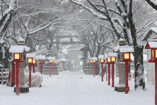 雪の鷲宮神社境内参道