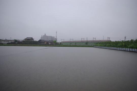 大雨で・・・
