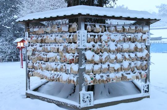 雪の鷲宮神社 雪化粧の絵馬