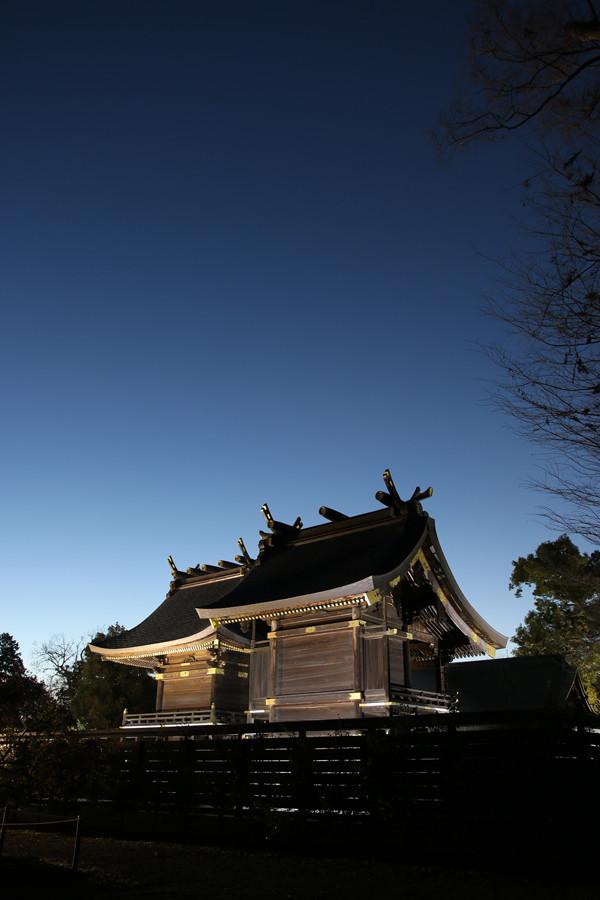 明け方の本殿2 鷲宮神社2015年初売り