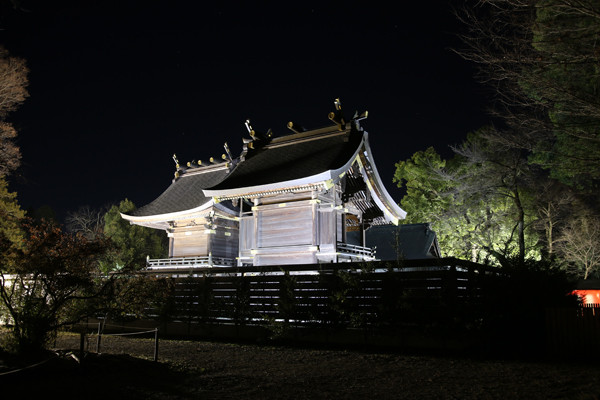 元旦の本殿 鷲宮神社2015年初売り