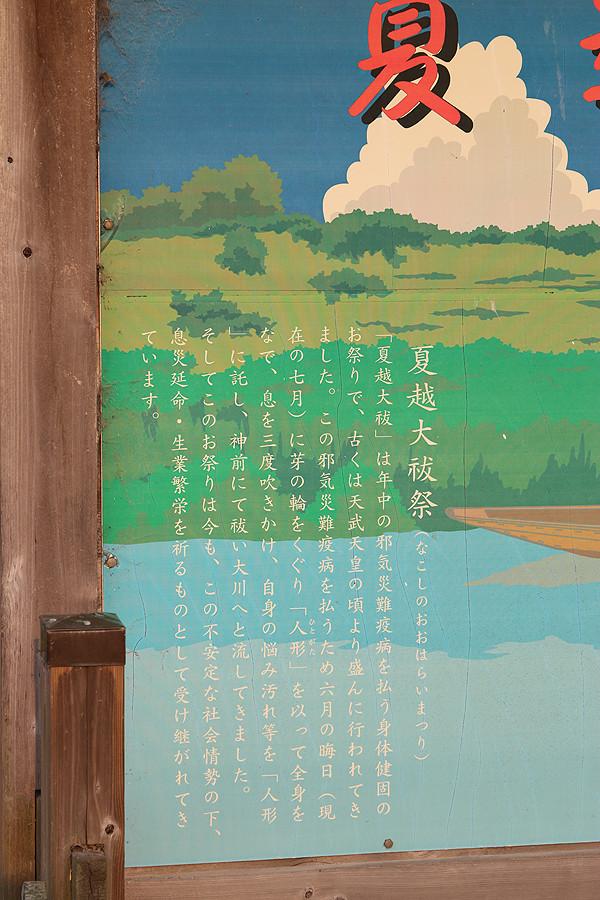 鷲宮神社 夏越祭16