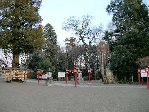 地震後の鷲宮神社境内