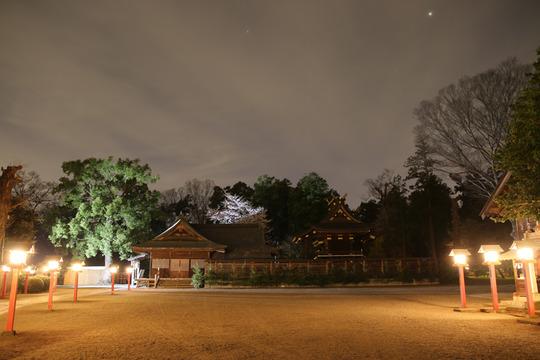 夜の鷲宮神社本殿と拝殿20140331