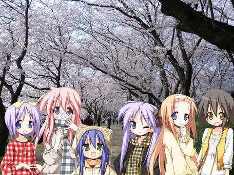 みんなで桜の道を・・・ 幸手権現堂