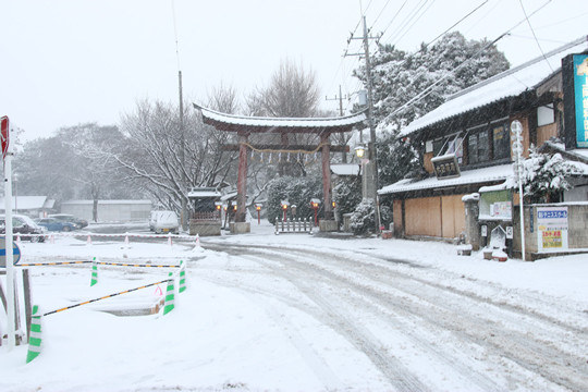 雪の鷲宮神社 鳥居前
