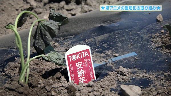 「埼玉県アニメの聖地化の取り組み」テレビ埼玉06