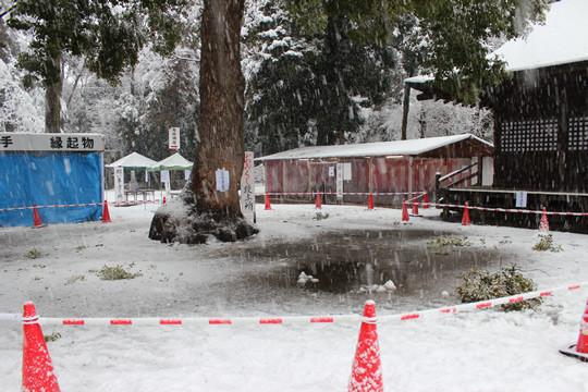 大雪の日の鷲宮神社拝殿前