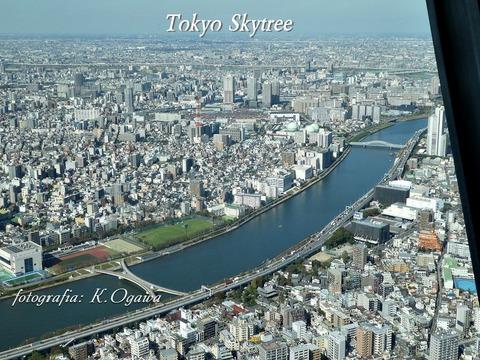skytree5a