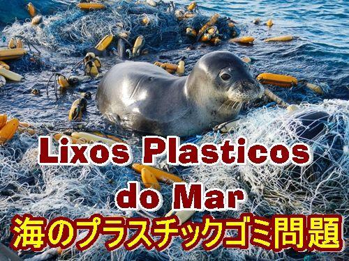 Plasticgomiの画像