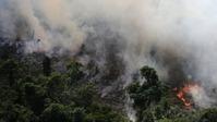 ブラジルアマゾン大規模火災