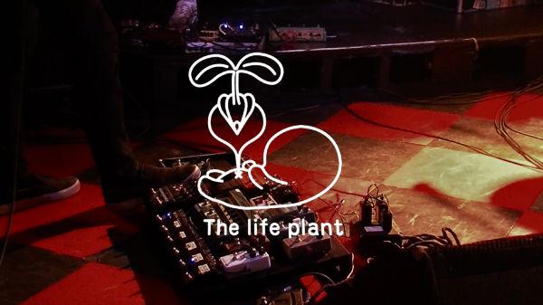 thelifeplant_thumb600
