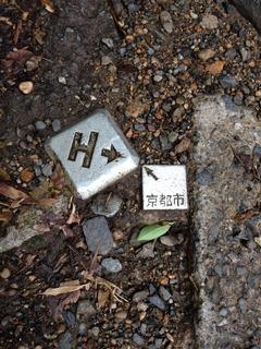 ツーショット京都市とJR