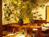 でかい 柿の木