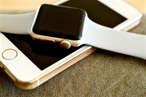 apple-watch-1694985_1280