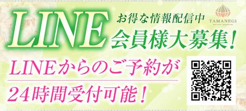 タマネギ_LINE会員募集