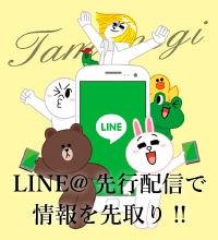 Tamanegi-Line@