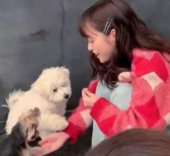橋本環奈、子犬と戯れる姿にネット民が悶絶「犬より可愛い」「犬になりたい人生だった」