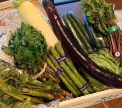 佐々木希、野菜たっぷりハンバーグ手作りで称賛の声「さすがの腕前」