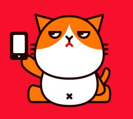 ワイモバイル猫