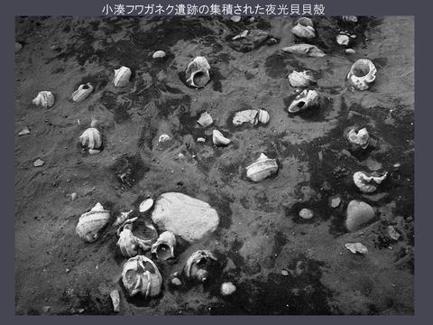 20170922 映像民俗学の会奄美大会レジュメ(HP用高梨)_p_22
