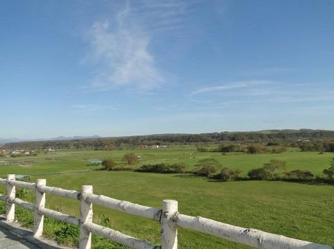白い柵と草原