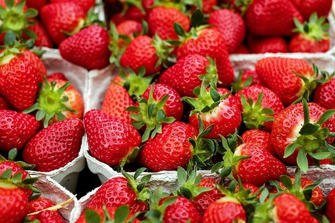 strawberries-1396330_640
