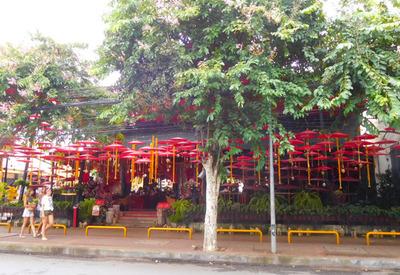 blog-image-Chiangmai-Cafe