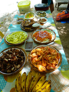 blog-image-honda-bay-island-hopping-food