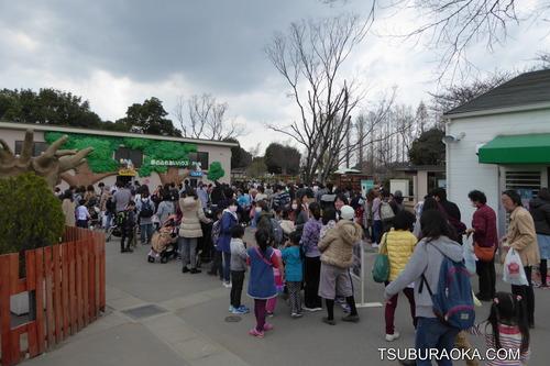 東武動物公園の割引クーポン情報2019!無料チケッ …
