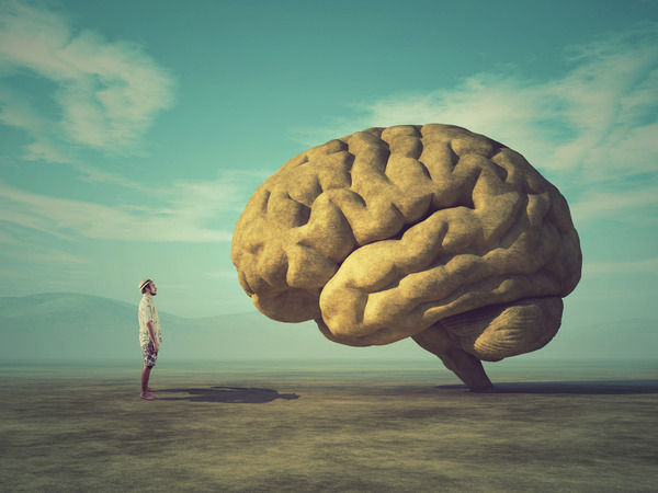 脳「人間の眼には盲点というものがある」ぼく「ふむ」