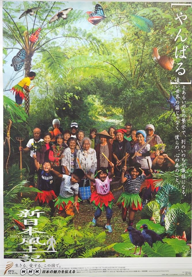 新日本風土記「やんばるの森」放送のお知らせ
