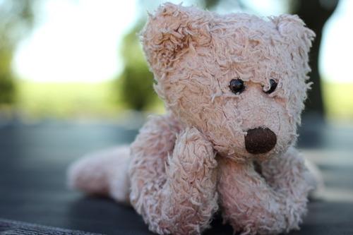 stuffed-animal-450473_1280